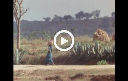 In viaggio  con Rossif - Un giorno in India