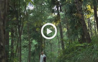 Asia, vite segrete, luoghi nascosti - Cina, la montagna degli dei (corta)