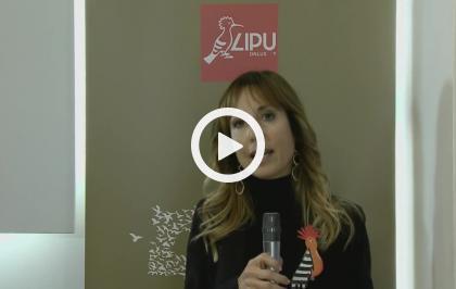 50 anni di LIPU - Roberta Cutuli