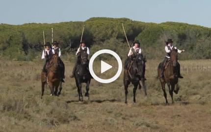 Aurelia: a cavallo lungo il mare